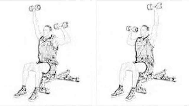 Seated Alternated Shoulder Press