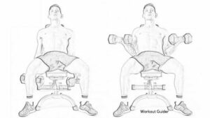 SUPINE DUMBBELL INCLINE BICEP CURL