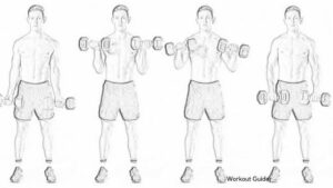 SUPINE CURL TO PRONATE CURL