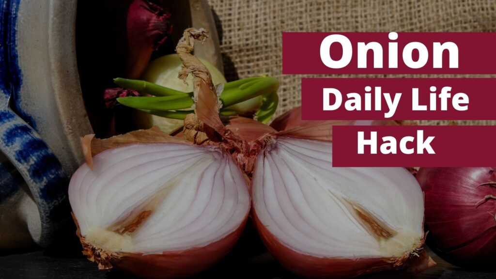 Onions, Daily Hack , Amazing Health Benefits Of Onion
