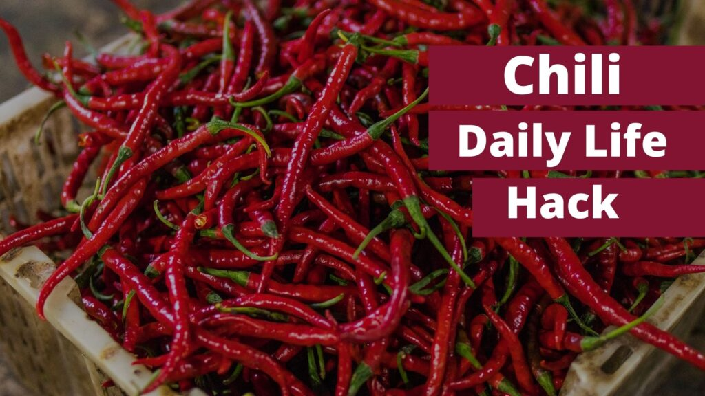 Chili, Amazing Daily Hack To Cool Down, Health Benefits OF you