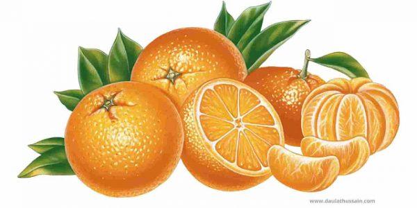 Types of Orange Foods